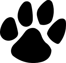 Image result for panther paw