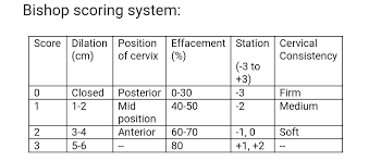 Effacement And Dilation Of The Cervix Chart Cervical Dilation Effacement Station Chart