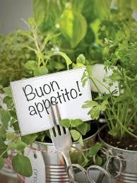 Herb Garden Grow Your Own Kitchen Countertop Herb Garden Hgtv