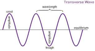transverse and longitudinal waves venn diagram what are the 3 main types of seismic waves how do they