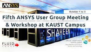 Design Science Consulting Inc Fifth Ansys User Group Meeting Workshop At Kaust Fluid Codes