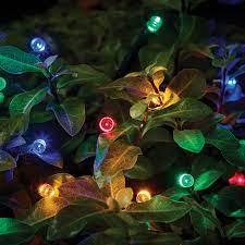 solar string light set wide range of