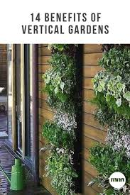 14 benefits of vertical gardens