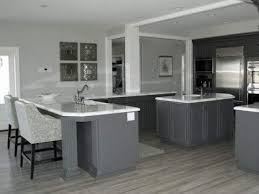 Grey Kitchen Floor White Cabinets Kitchen Appliances Tips And Review