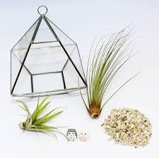 hanging geometric vase air plant terrarium components
