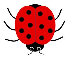 Free Ladybird Cliparts, Download Free Ladybird Cliparts png images, Free  ClipArts on Clipart Library