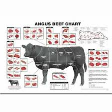 Cow Meat Chart Details About S667 Cattle Butcher Chart Beef Cuts Diagram Meat Custom Silk Art Poster Print
