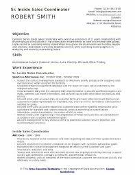 Service Coordinator Resumes Coordinator Skills Resume Airexpresscarrier Com