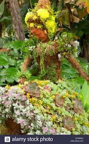 topiary san go botanic garden encinitas california