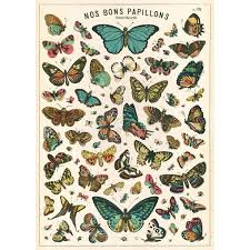 French Butterfly Chart Papillons Vintage Style Poster