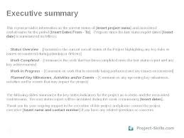 Project Recap Template Beauteous How To Write A Daily Report Sample Writing Status Weekly Template