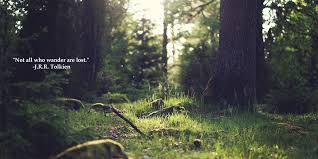 Forest Quotes Awesome So True JRR Tolkien Quote Travel Quotes Quote Inspiration