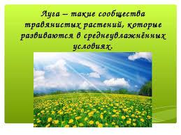 Безлесные просторы России Луга презентация к уроку Географии Луга такие сообщества травянистых растений которые развиваются в среднеувл