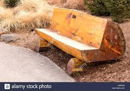 outdoor log benches wonderful photos inspirations rustic outdoor benches wonderful wood log outdoor half log benches