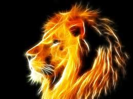 free colorful lion wallpaper