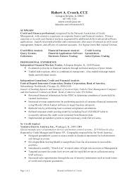 Credit Analyst Resume Fund Analyst Resume Warehouse Worker Resume Examples Sample Resumes