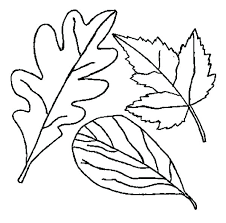 toronto maple leaf coloring pages page for preschool fall leaves fa