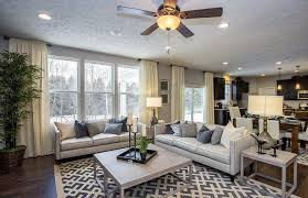 transitional living room furniture. Transitional Living Room With Homeware Drake Sofa, Brayden Studio Rafael Light Gray/Ivory Area Furniture I