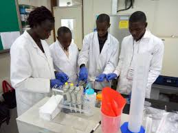 File:A group of African scientists working as a team.jpg - Wikimedia Commons
