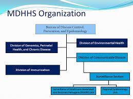 Joyce Lai Mph Michigan Department Of Health And Human