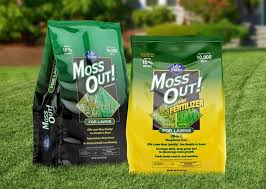 Image For Lawns How To Kill Lawn Moss And Keep It Gone