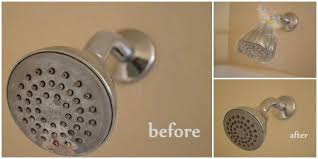 tip how to clean a shower head