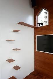 Floating Shelves For Cats Stunning Modern Cat Tree Alternatives For UpToDate Pets