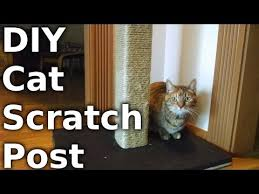 fast s 23 build a cat scratching post