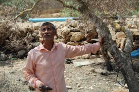 They just die': Palestinian village choked by Israeli settlement dumpsite |  Middle East Eye
