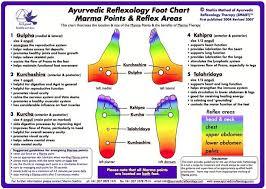 Ayurveda Charts Pdf Reflexology Ayurveda Foot Reflexology
