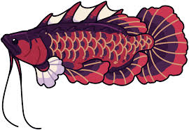Download 19 Jan - Fish - Full Size PNG Image - PNGkit