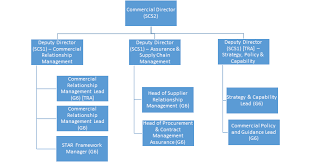 Network Rail Organisation Chart Department For Transport Group Commercial Director Green