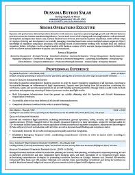 Mechanic Resume Cool Convincing Design And Layout For Aircraft Mechanic Resume 81