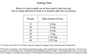 Mazuri Mini Pig Feeding Chart Miniature Pig Care Peewee Piglet