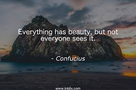 Everything Has Beauty Quotes Best Of Everything Has Beauty But Not By Confucius InBlix