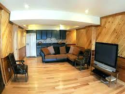 Cheap Basement Finishing Ideas Awesome Design