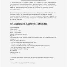 Best Examples Of Good Resumes | Bothie.net