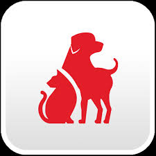 Cat Dog First Aid Red Cross