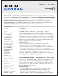 Professional Resume Writing Services Resume Design