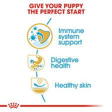 <b>ROYAL CANIN French Bulldog</b> Dry Puppy Food 3kg | Pets At Home