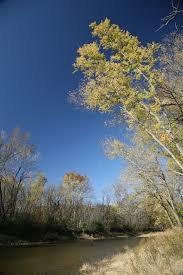 Middle Fork Vermilion River