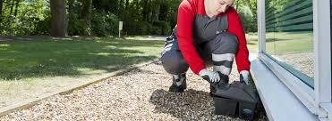 Image result for pest treatment