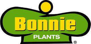 Crop Rotation Made Easy Bonnie Plants