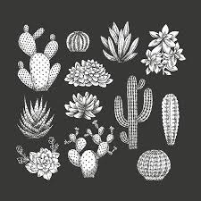 Bloem Hand Vectoren Illustraties En Clipart 123rf
