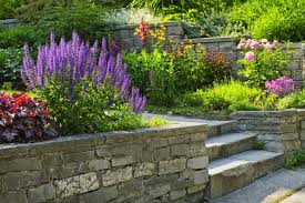 terraced garden with retaining walls