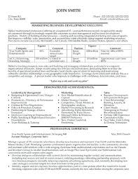 Example Of A Business Resume Beauteous Business Development Manager Resume Samples Professional Business
