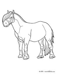 Small Picture Pony coloring pages Hellokidscom