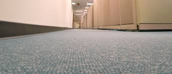 Image Forbo Flooring Timeless Floor Company Reasons To Choose Carpet Over Wood Flooring In Your Office