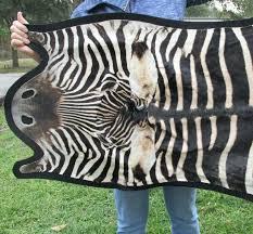 zebra hide rug x real skin with felt backing you are ing metallic cowhide uk ikea