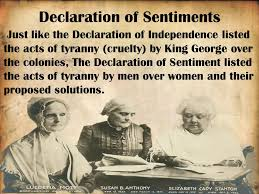 chapter analyzing arguments havlicek s classroom the declaration of sentiments